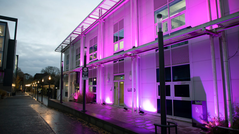 Purple Light up 4 - Lloyd Building