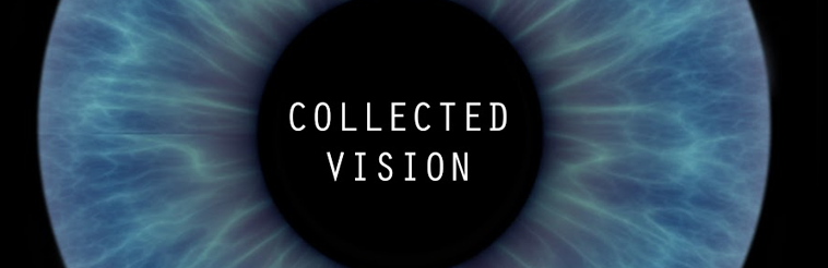 collected-vision-2015-758x246