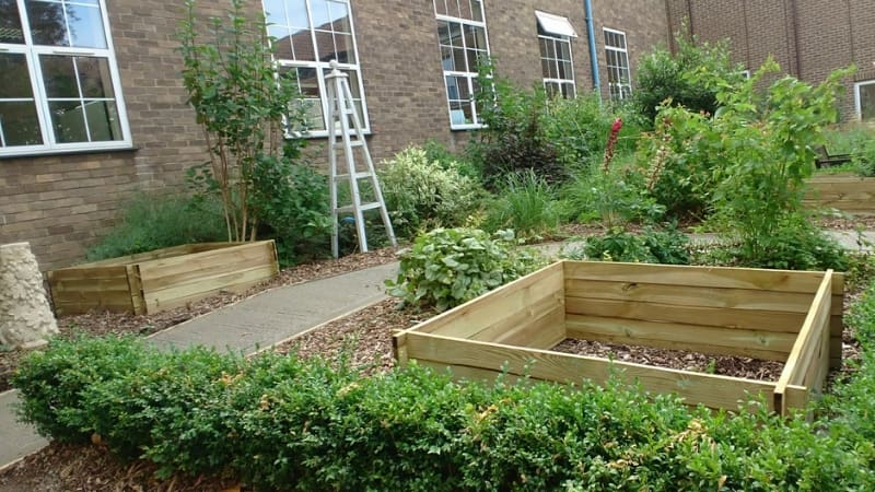 Sensory garden at Harcourt Hill campus