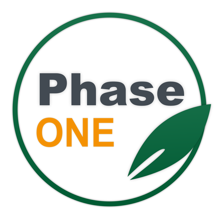 phase-one-icon
