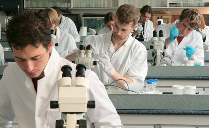 Students in research lab