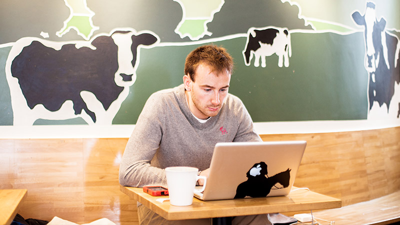 Male student working in cafe