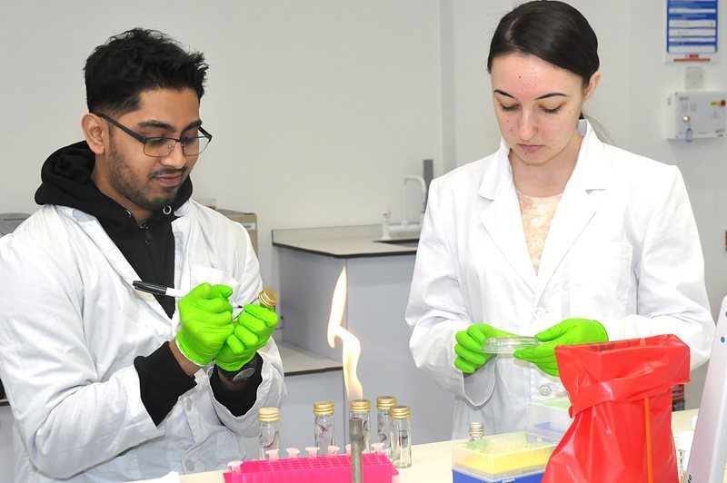 Students undertaking lab work