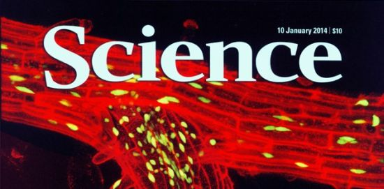 Brookes on the cover of Science