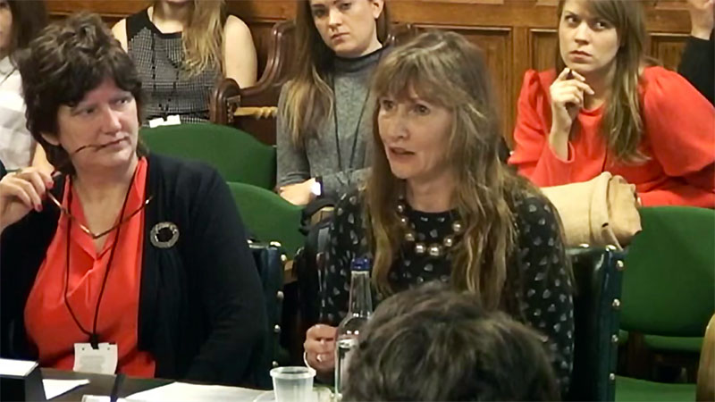 Professor Tina Miller called as expert witness for parliamentary inquiry