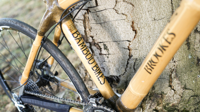 Bamboo Bike Revival: Back to the Future