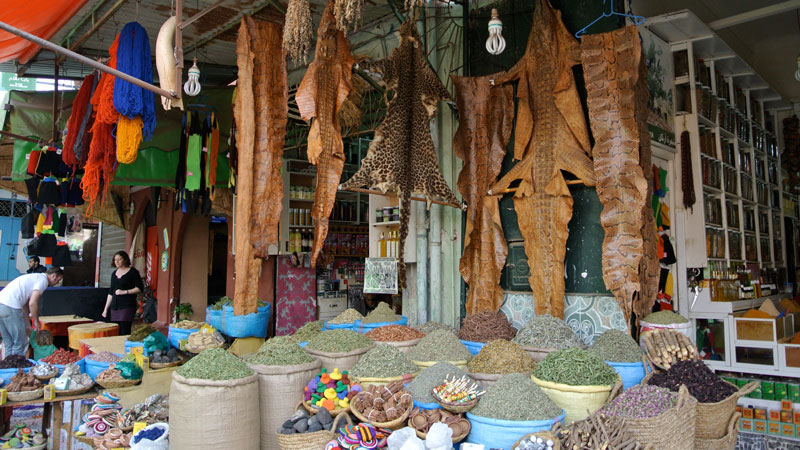 Herbalist in Marrakesh