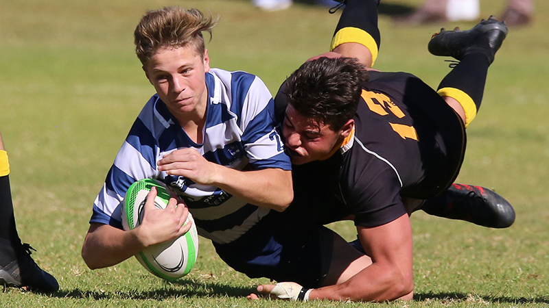Academics call on Chief Medical Officers to support removal of tackling in children's rugby