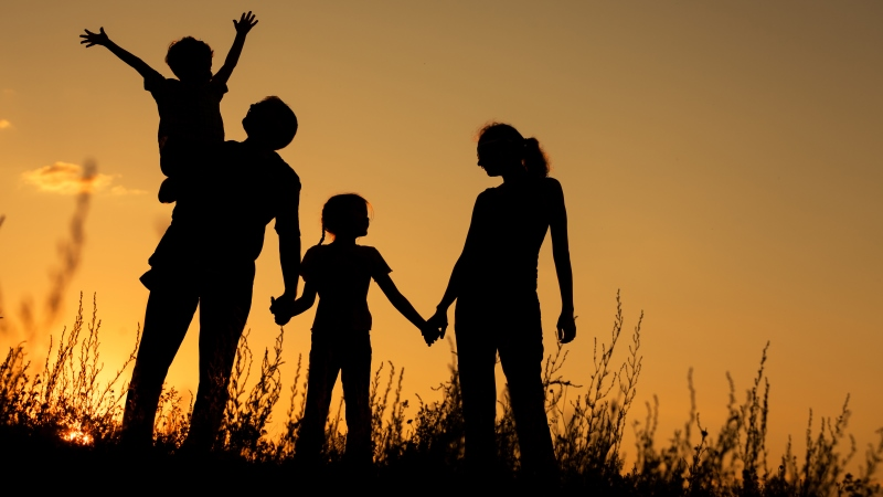 Gender and family lives: understanding the generational shift