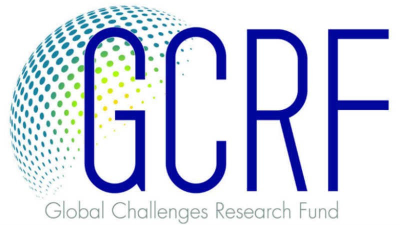 Researchers awarded funding to address global issues through collaborative projects