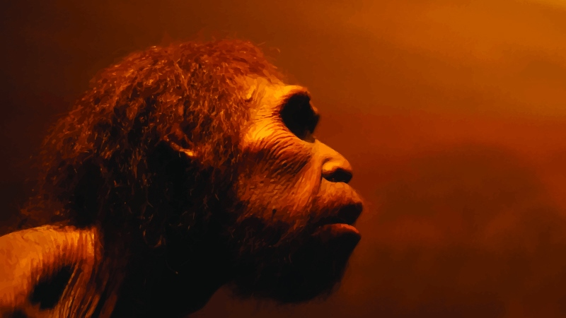 Brookes human evolution expert part of a major new Neanderthals documentary